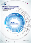 2013 Interim Report 2013